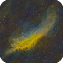 NGC 1499 - The California Nebula in SHO Hubble Palette,                                Cfosterstars