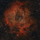 Caldwell 49 - Rosette Nebula from the city,                                Sektor