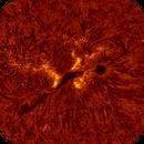 2020.06.10 Sun AR12765 H-Alpha,                                Vladimir