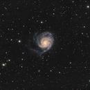 M101, The Pinwheel Galaxy, LRGB, 14.0 hours,                                riot1013