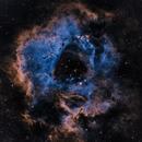 Rosette Nebula,                                NighttimeskyGuy