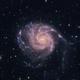 M101,                                Becomart