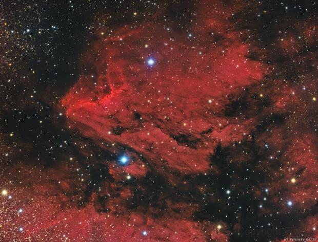 IC5070 - Pelican Nebula,                                Elvie1