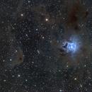 NGC 7023 Iris Nebula,                                Tim Gillespie