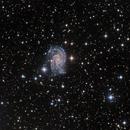 NGC 2835 Constellation de l'Hydre,                                Roger Bertuli