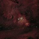 Cone  Nebula and the Christmas Tree Cluster,                                James R Potts