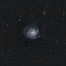 M101,                                Rhett Herring