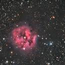 IC 5146,                                John Leader