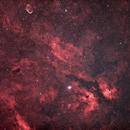 Sadr region of Cygnus,                                Dom Schepis