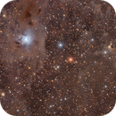 The Iris and Ghost Nebula (NGC7023 and vdB 141),                                Andrew Klinger