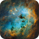 IC 410 - Tadpoles Nebula,                                Michel Makhlouta