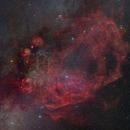 Gum Nebula and Vela Supernova Remnants,                                Chan Yat Ping Carl