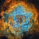Rosette Nebula - Caldwell 49. (Completely reprocessed),                                Alberto Pisabarro