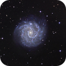 NGC 3184,                                Frank Colosimo