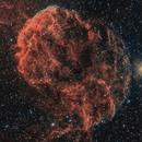 Supernova Remnant in Gemini,                                Alex Roberts