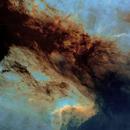 pelican nebula SHO,                                karimastro
