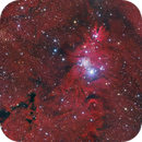 Cone Nebula,                                whitenerj