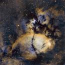 IC1795 - Fishhead Nebula,                                Seymore Stars