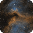 IC1848,                                Derek Chuan WANG