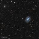 Spiral Galaxy NGC 4395,                                Alberto Pisabarro
