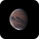 Mars 2020-08-08,                                stricnine