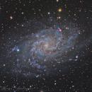 M33,                                Adrien MEURISSE