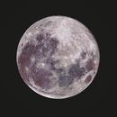 Moon,                                Lorenzo Palloni