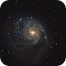 M101 and Friends,                                wolfman_55