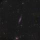 NGC 4236 - Caldwell 3 - LRGB,                                Roberto Botero
