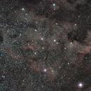 NGC7000 /  Caldwell 20,                                Stefano Zamblera