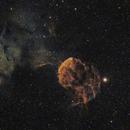 IC 443, Nébuleuse de la Méduse SHO,                                Valentin