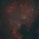 NGC 7000,                                angelo mazzotti