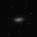 NGC 2903,                                the3dwizard