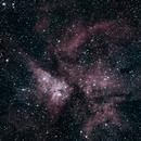Carina Nebula NGC3372,                                Peter S Murdoch