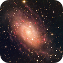 NGC 2403; How did Chuck miss this one?,                                David Redwine