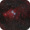 NGC 2264,                                Alex Weindl
