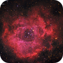 The Rosette Nebula,                                Timgilliland