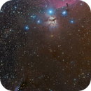 Horsehead, Flame, Messier 78,                                Anthony Quintile