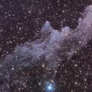 Witch Head Nebula (IC 2118),                                Andrew Klinger