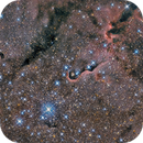 IC1396 & Elephant Trunk,                                Dennis Kaiser