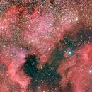 NGC7000 -  RASA11 - 10x 4 min,                                dcnikon