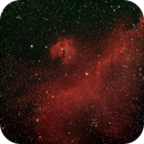 Seagull Nebula IC 2177,                                Starman609