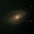 M81 Bodes,                                Rodney Bell