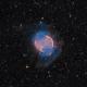 M27 - The Dumbbell Nebula,                                Jason Guenzel