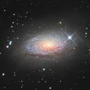 Messier 63 the Sunflower Galaxy,                                Albert van Duin
