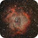 Rosette Nebula,                                Michael_Xyntaris