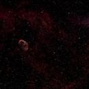 Crescent Nebula,                                Daniel Martinez