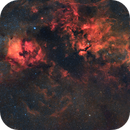 Cygnus widefield in HaRGB,                                Emil Andronic