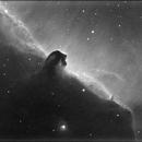 Horsehead Nebula - IC434,                                eschwen
