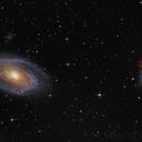 M81, M82,                                avolight